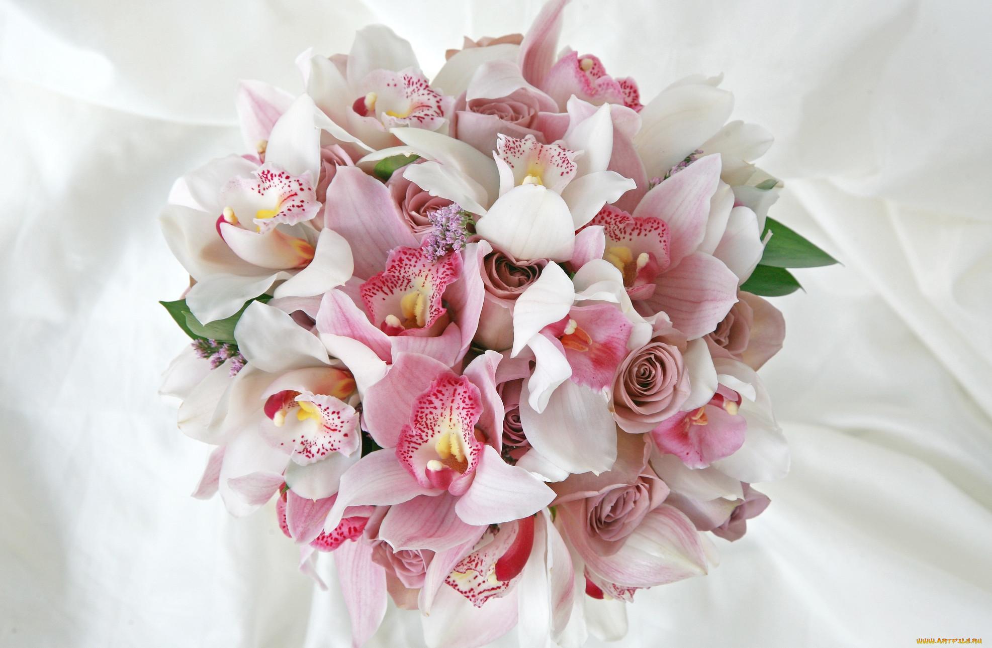 картинки букетов орхидеи низкая цена интернет-магазине